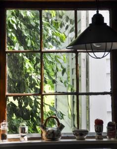 St. Clairsville, Ohio:  Farmhouse kitchen window 5/28/10