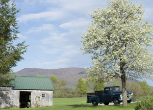 Manchester, Vt.:  May Time 5/8/13