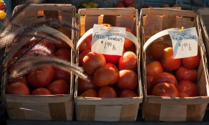 Little Compton, RI:  Farm Stand  9/3/12
