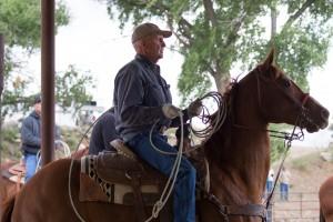 Mayer, AZ:  Header in the chute at the ready  4/25/15