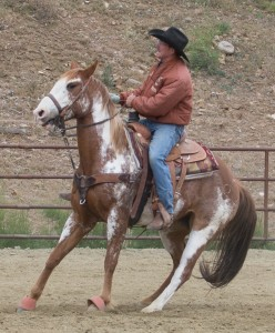Mayer, AZ:  Pulling the heel rope tight  4/25/15